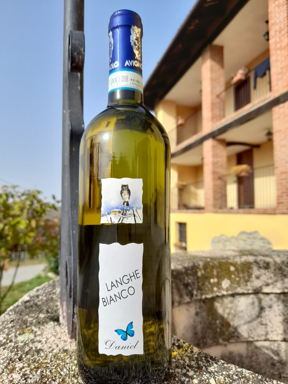 bottiglia di Langhe DOC Bianco Daniel